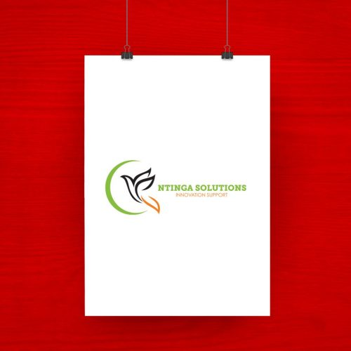 Ntinga Solutions logo